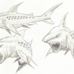Megajaws Sketches